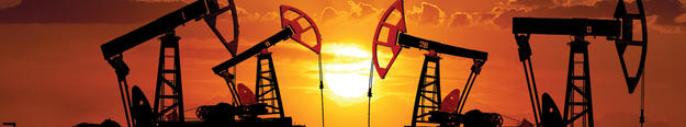 Energy Sealing Systems - Oil & Gas Seals